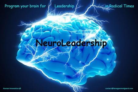 Brain NeuroLeadership